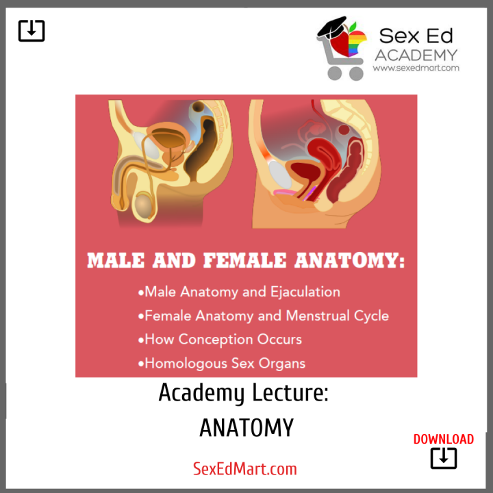 Academy Lecture Anatomy